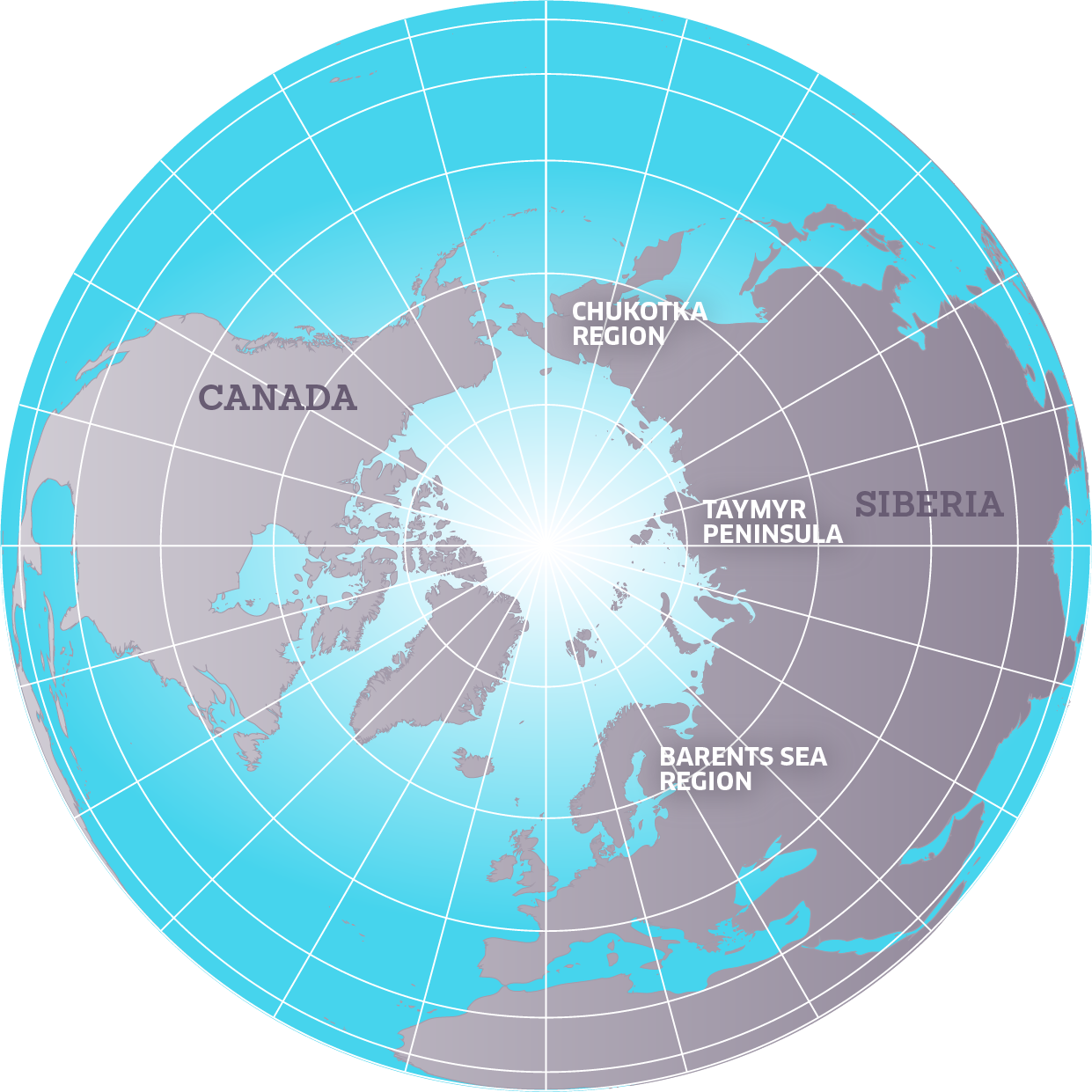 Arctic region map on a globe