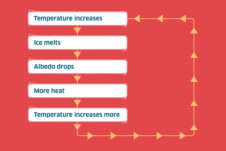 Feedback loop diagram showing temperature