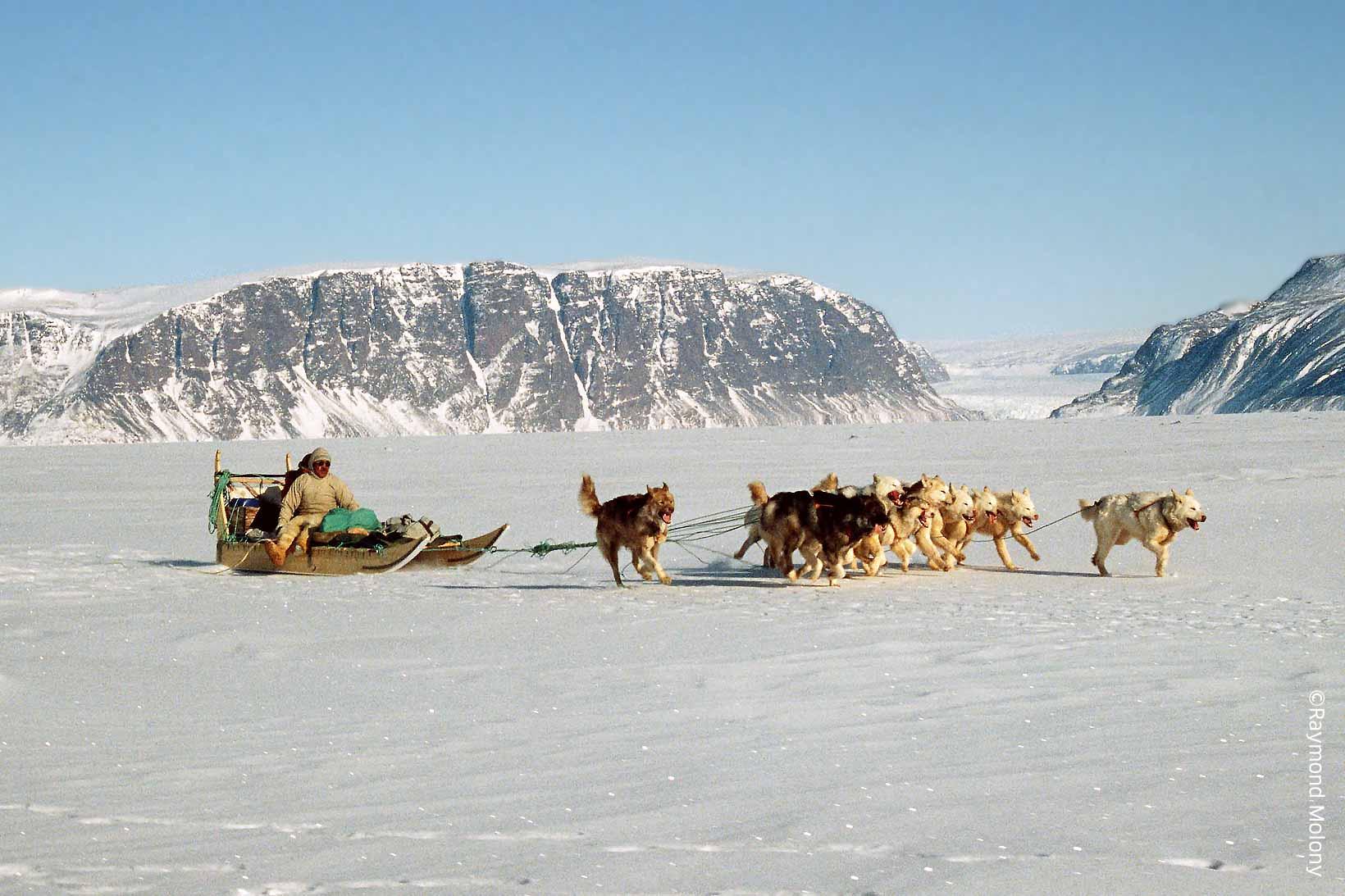 Inuit hunter on sledge