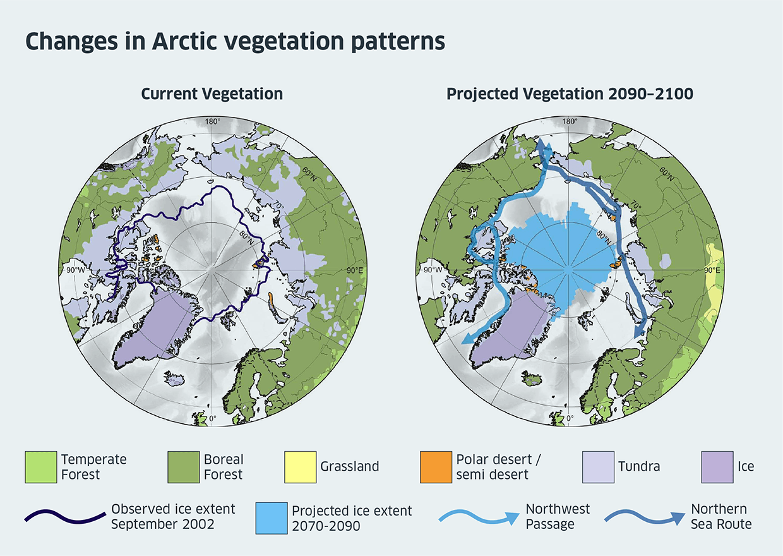 Changes in Arctic vegetation patterns - diagram